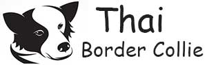 Thai Border Collies Logo